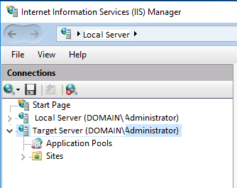 IIS Server List Window Pane