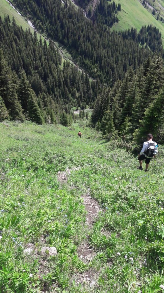 King Creek Ridge to Mount Hood Route