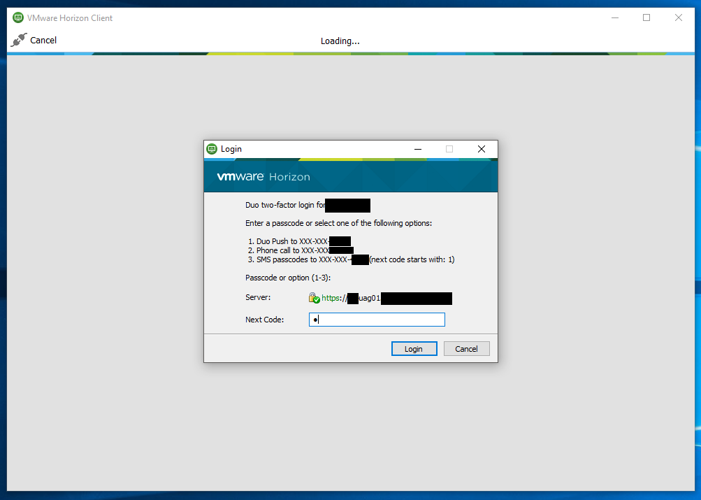 Screenshot of Duo MFA 2FA Prompt on VMWare Horizon Client Login