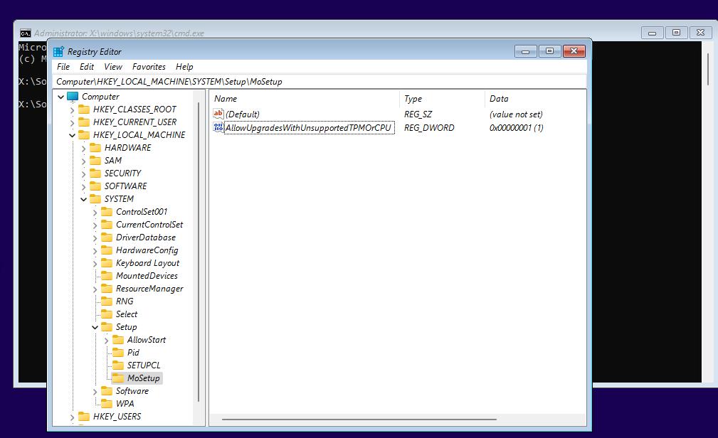 Windows 11 Installer - MoSetup and AllowUpgradesWithUnsupportedTPMOrCPU